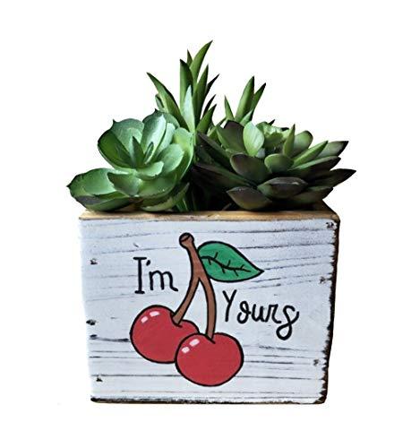Lea Cherry - Cherry Pair I'm Yours Cactus Succulent Planter Box