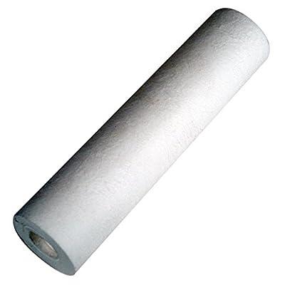 """HydroLogic 22105 Small Boy Sediment Filter, 2.5"""" L x 10"""" H"""