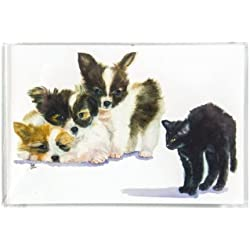 Rainbow Card Company 25-Pack Postcards - Scary/Spooky and Boo