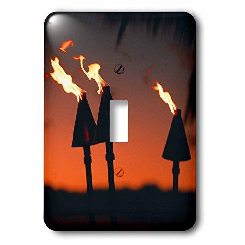 3dRose LLC lsp_89613_1 Tiki Torches Hawaii Us12 Dpb0571 Douglas Peebles Single Toggle Switch by 3dRose