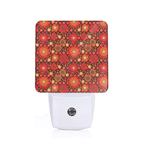 Colorful Plug in Night,Vivid Colored Botanical Composition with Gerbera Daisies,Auto Sensor LED Dusk to Dawn Night Light Plug in Indoor for Childs Adults