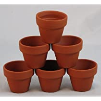 10 - 2.5 x 2.25 Clay Pots - Great for Plants and Crafts