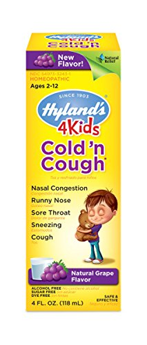 Hyland's Cold and Cough 4 Kids, Grape Flavored, Cough Syrup Medicine for Kids, Decongestant, Sore Throat Relief, Natural Treatment for Common Cold Symptoms, 4 Fl Oz (Best Daytime Cough Suppressant)