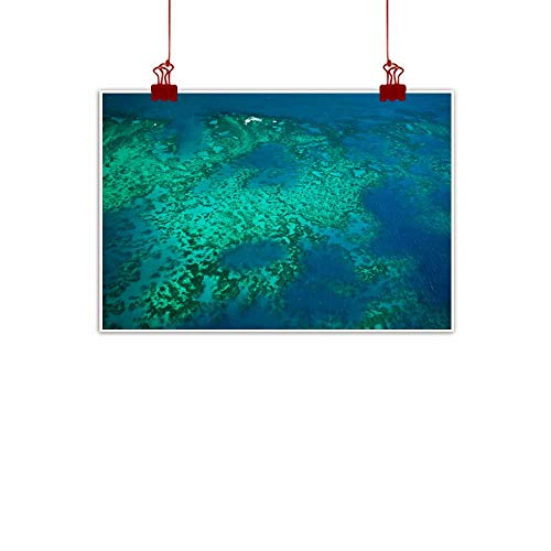 duommhome Light Luxury American Oil Painting Aerial phosporescent Arlington Coral at Great Barrier Reef Marine Park Canvas Wall Art 35