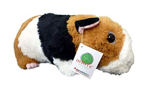 Guinea Pig Animals - Adore 13