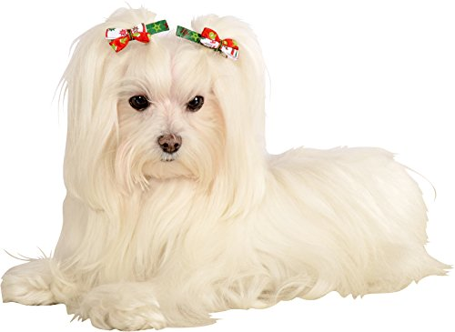 Bestselling Dog Hair Accessories