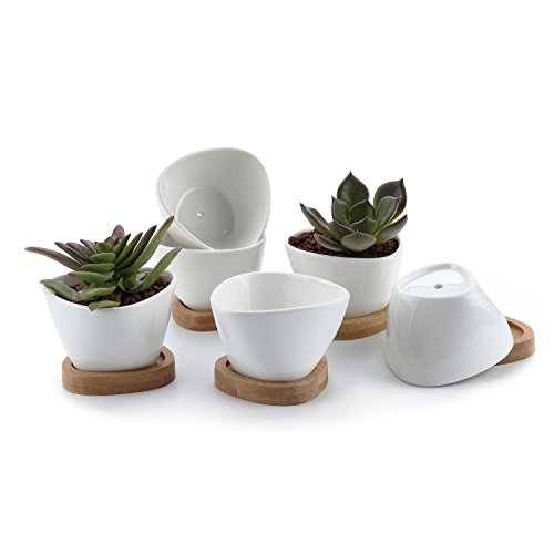 T4U 3 Inch Ceramic White Misalignment Traiangle Design succulent Plant Pot/Cactus Plant Pot With Bamboo Tray Package 1 Pack of 6