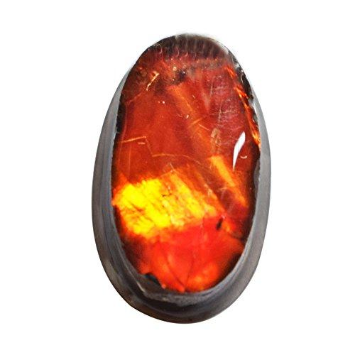 (ABC Jewelry Mart Genuine Ammolite Oval Shape Cabochon, Size 19X12X5 MM, Green Red Flashy Ammonites, Pendant Stone AG-6593)