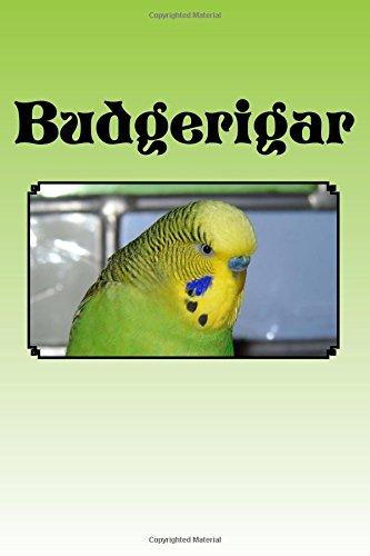 Budgerigar: journal / notebook PDF