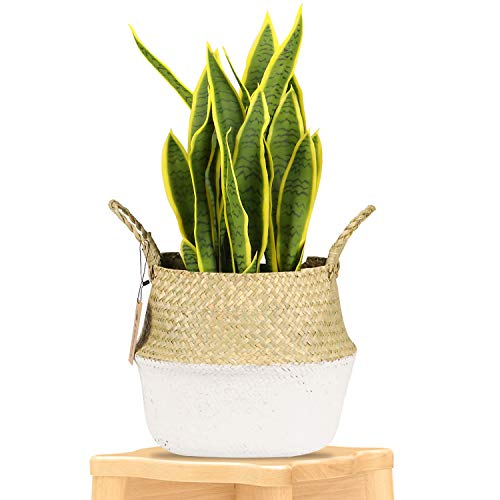 Leepes Seagrass Plant Basket Indoor Woven Planter Holder with Macrame Wrap Pot Cover Storage Organizer with Handles for Home Decor(10.6
