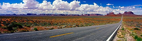 Posterazzi Poster Print Collection Scenics View of Road to Monument Valley Utah USA Panoramic Images, (20 x 6), Multicolored from Posterazzi