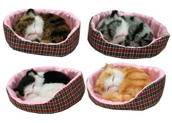 Napping Sleeping Cat Kitten in Bed Collectible Figure, 5-inch, (1-pc Random)