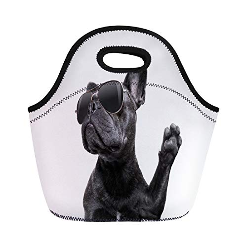 Semtomn Neoprene Lunch Tote Bag Cool Posing French Bulldog Sunglasses Looking Up Like Model Reusable Cooler Bags Insulated Thermal Picnic Handbag for Travel,School,Outdoors,Work