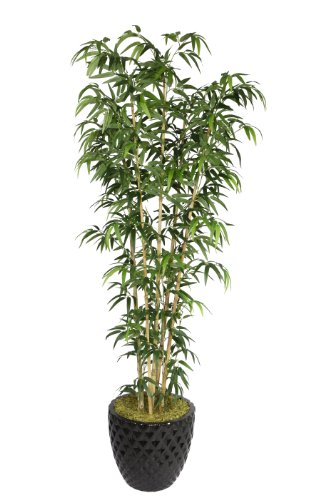 Tree Tabletop Silk Bamboo - Laura Ashley VHX116205 78-Inch Natural Bamboo Tree in 16-Inch Fiber Stone Planter
