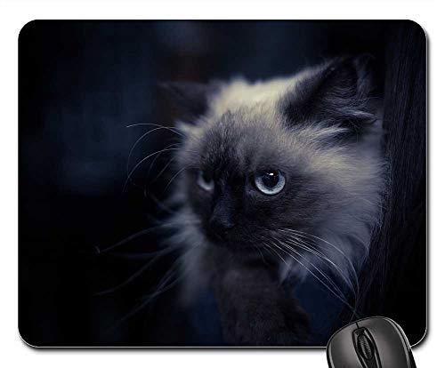 Mouse Pads - Pets Animal Cat Eye Eyes ()