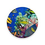 Coasters for Drinks,Coral And Fish Ceramic Round Cork Trivet Heat Resistant Hot Pads Table Cup Mat Coaster-Set of 2 Pieces
