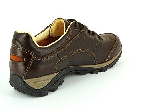Meindl Linosa Identity––Zapatos de hombre–Color Marrón Oscuro - 46