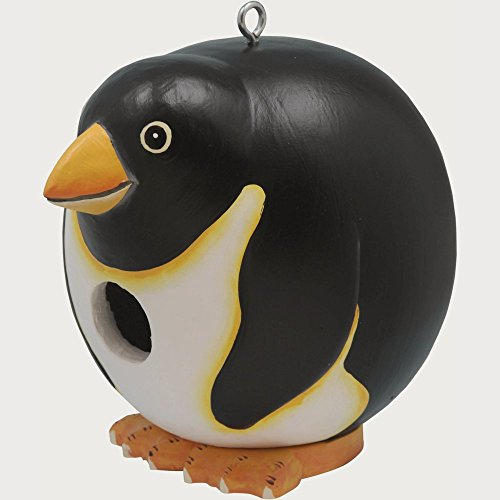 Songbird Essentials SE3880082 Penguin Gord-O Birdhouse (Set of 1)