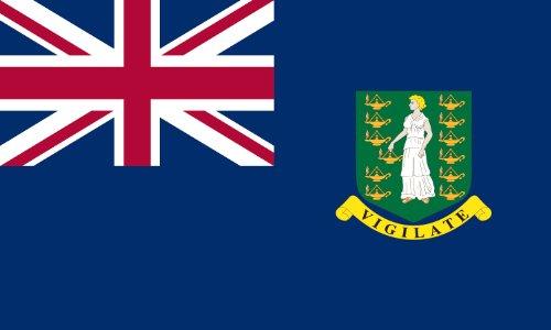 America's Flag Company FF2X3NBVI1 2-Foot by 3-Foot Nylon British Virgin Island Flag (British Virgin Islands World Flags)
