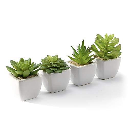 Nattol Modern Mini Artificial Succulent Plants Potted in Cube-Shape White Ceramic Pots for Home Decor, Set of 4 (White)