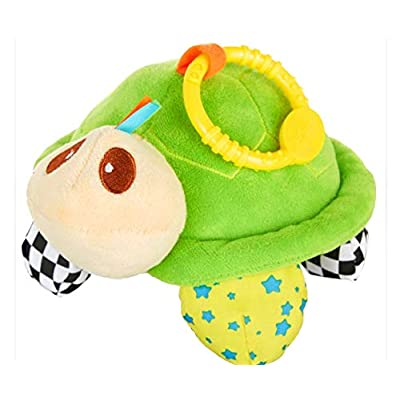 Playtex Baby Green Turtle Teether Toy: Toys & Games