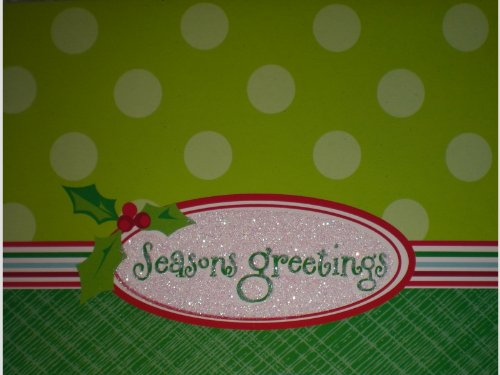 Glittered Seasons Greetings Note Cards w/ Envelopes (Glittered Holly)
