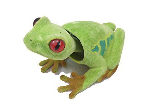 Bobblehead Frog by Batty Bargains
