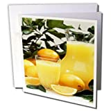 3dRose TDSwhite – Farm and Food - Food Refreshing Orange Juice - 12 Greeting Cards with Envelopes (gc_285170_2)