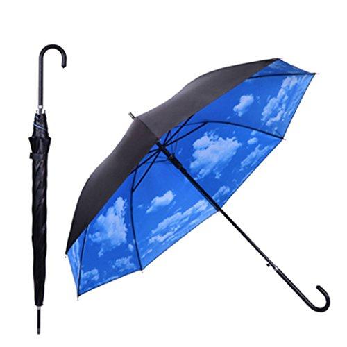 Kung Fu Smith Protection Umbrella