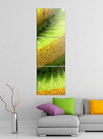 Amazon De Leinwandbild 3tlg Kiwi Obst Grun Scheiben Kuche Bilder