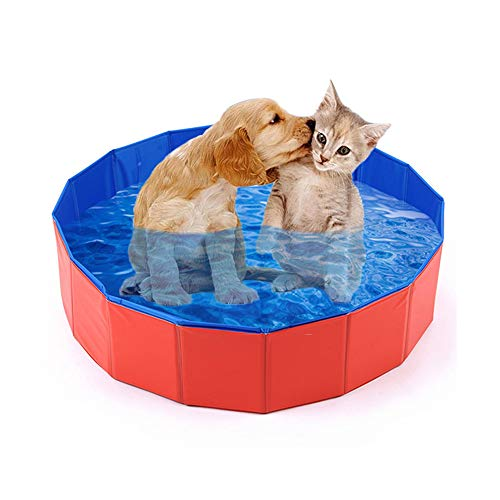 Mcgrady1xm Collapsible Pet Dog Pool Large, Kiddie Pool Hard Plastic Foldable Bathing Tub PVC Outdoor Pools for Dogs Cat Kid -