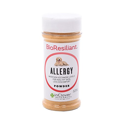 In Clover BioResiliant Allergy Support for Dogs to Maintain Histamine Levels for Healthy Skin and Less Discomfort Due to Seasonal and Environmental Allergies 100 Gram (3.5 oz.)