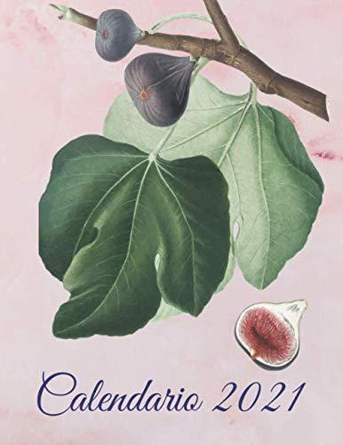 Calendario 2021: Calendario illustrato di frutta con spazi per