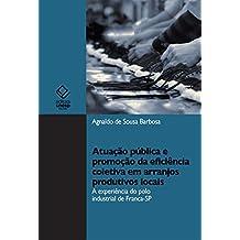 Atuação pública e promoção da eficiência coletiva em arranjos produtivos locais