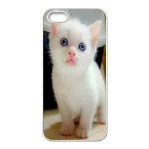 Dustin White Kitten IPhone 5,5S Cases Big Blue Eyes White Kitten for Teen Girls Protective, Color Case for Iphone 5s, [White]