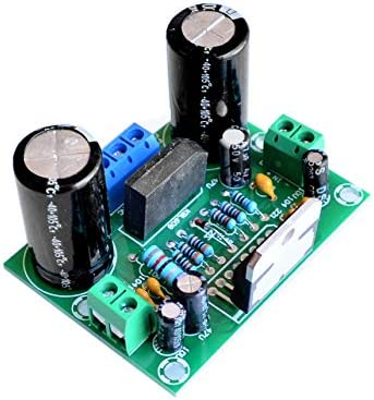 10PCS/LOT Digital Audio Amplifier Board Amplifier Board Mono