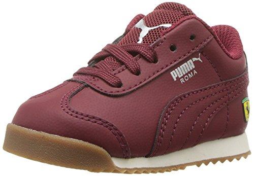 (PUMA unisex-baby Ferrari Roma Kids Sneaker, Pomegranate-Pomegranate, 5 M US Toddler)