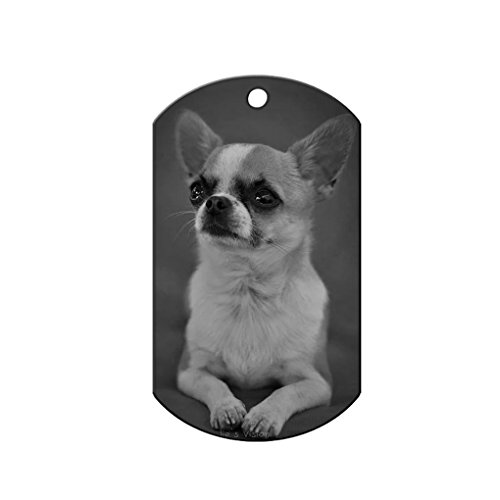Customized Photo & Text Pet ID Tag -- Personalized Stainless Steel Dog Cat Anti-Lost Engraved Plate Name Tag Charms for Collar, Necklace, Keychain, Rectangle, Black