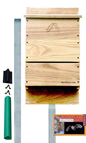 BestNest Single-Celled Bat House Kit with Pole, 85 bats