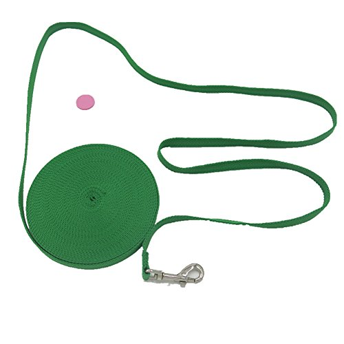 [Justzon Cotton Web Dog Training Lead Green (30-Feet)] (Cotton Training Leash)