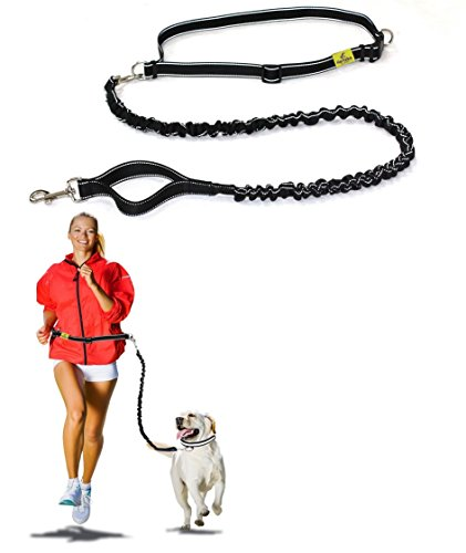 Best Quality Hands Free Dog Leash By Hertzko - Enjoy the Extra Freedom While Walking, Running or Hiking with Your Dog - Strong, Durable and Weather Resistant (48 inches Bungee)
