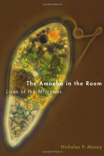 The Amoeba in the Room: Lives of the Microbes by Nicholas P. Money (2014-03-24)