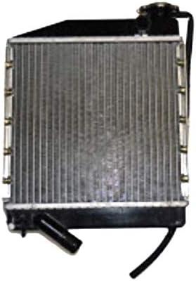 Radiateur Eau microcar Lyra Virgo I II III MC1/MC2/moteur Lombardini