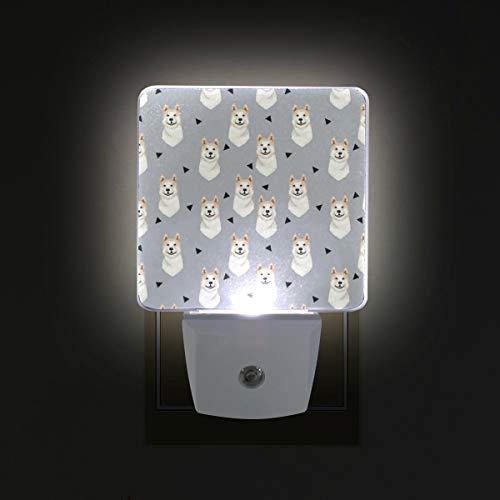 - Akita Dog Gray LED Night Lights with Auto Dusk to Dawn Sensor, Plug-in Warm White Wall Lights for Kids Room