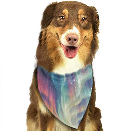 FRTSFLEE Dog Bandana Arctic Aurora Scarves Accessories Decoration for Pet Cats and Puppies