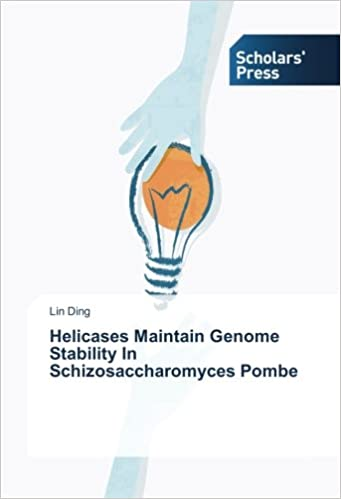 Book Helicases Maintain Genome Stability In Schizosaccharomyces Pombe
