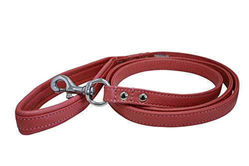 - Leather Padded Leash, Padded Handle, Double-Ply, 6' x 3/4