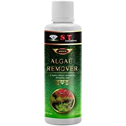 S.T. International Algae Remover for Aquariums, 10 Fluid Ounce