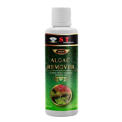 S.T. International Algae Remover for Aquariums, 10 Fluid Ounce by S.T. International