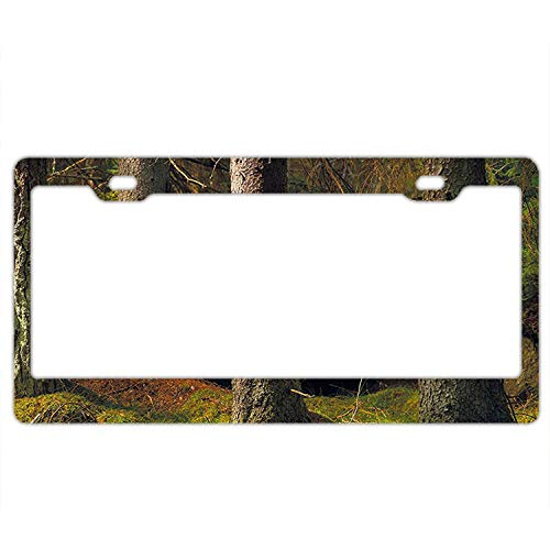 Pulongpoq Deep Dark in The Enchanted Forest with Magical Trees License Plate Frame Covers Novelty Auto Car Tag Soldiers Firemen Vanity Gift - Tree Accutronix